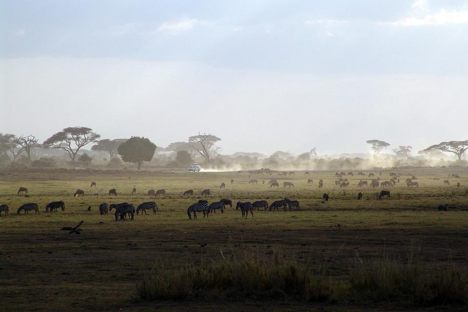 Le Kenya : Un séjour responsable au cœur du berceau de l'humanité