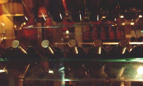 Cave à vin de vieillissement et cave à vin de conservation : lequel choisir?